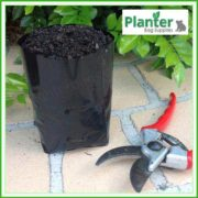 Poly-1.5-litre-Plant-Growbags-2