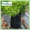 15 litre Poly Planter bag plant Growbag PB28 - Planter Bag Supplies NZ - for more info go to planterbags.co.nz