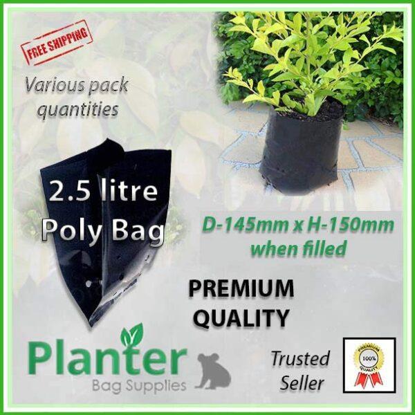 2.5 litre poly planter bag plant Growbag - Planter Bag Supplies NZ - for more info go to planterbags.co.nz