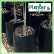 Poly-2.5-litre-Plant-Growbags-3