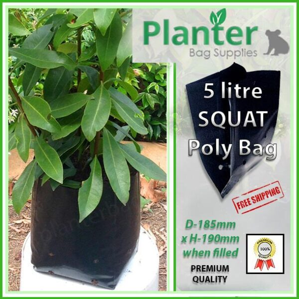 5 litre squat poly planter bag plant Growbag PB6.5 - Planter Bag Supplies NZ - for more info go to planterbags.co.nz