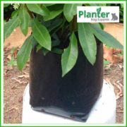 Poly-5-litre-Squat-Plant-Growbags-2
