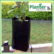 Poly-5-litre-Tall-Plant-Growbags-3