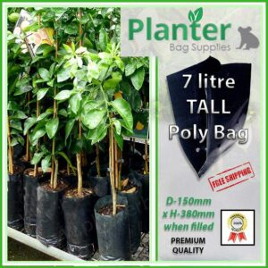 7 litre tall poly planter bag plant Growbag - Planter Bag Supplies NZ - for more info go to planterbags.co.nz