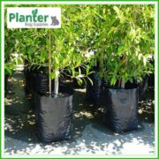 Poly-25-litre-Plant-Growbags-3