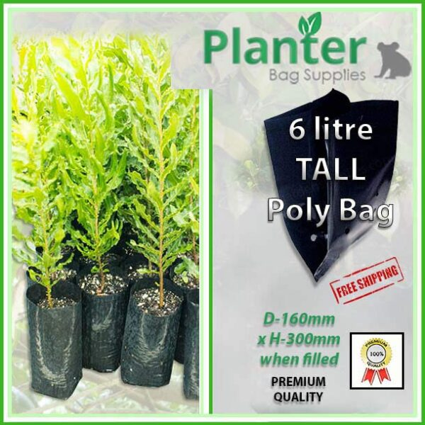 6 litre tall poly planter bag plant Growbag - Planter Bag Supplies NZ - for more info go to planterbags.co.nz