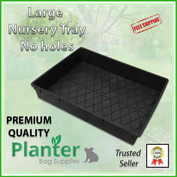 Large Nursery Tray Solid