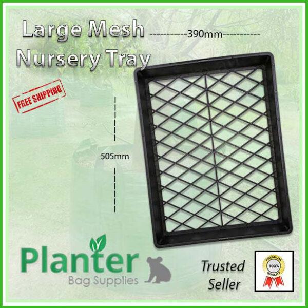 Large Nursery Tray